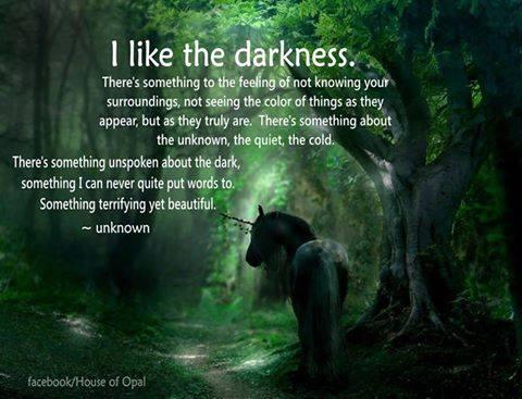 I like the darkness