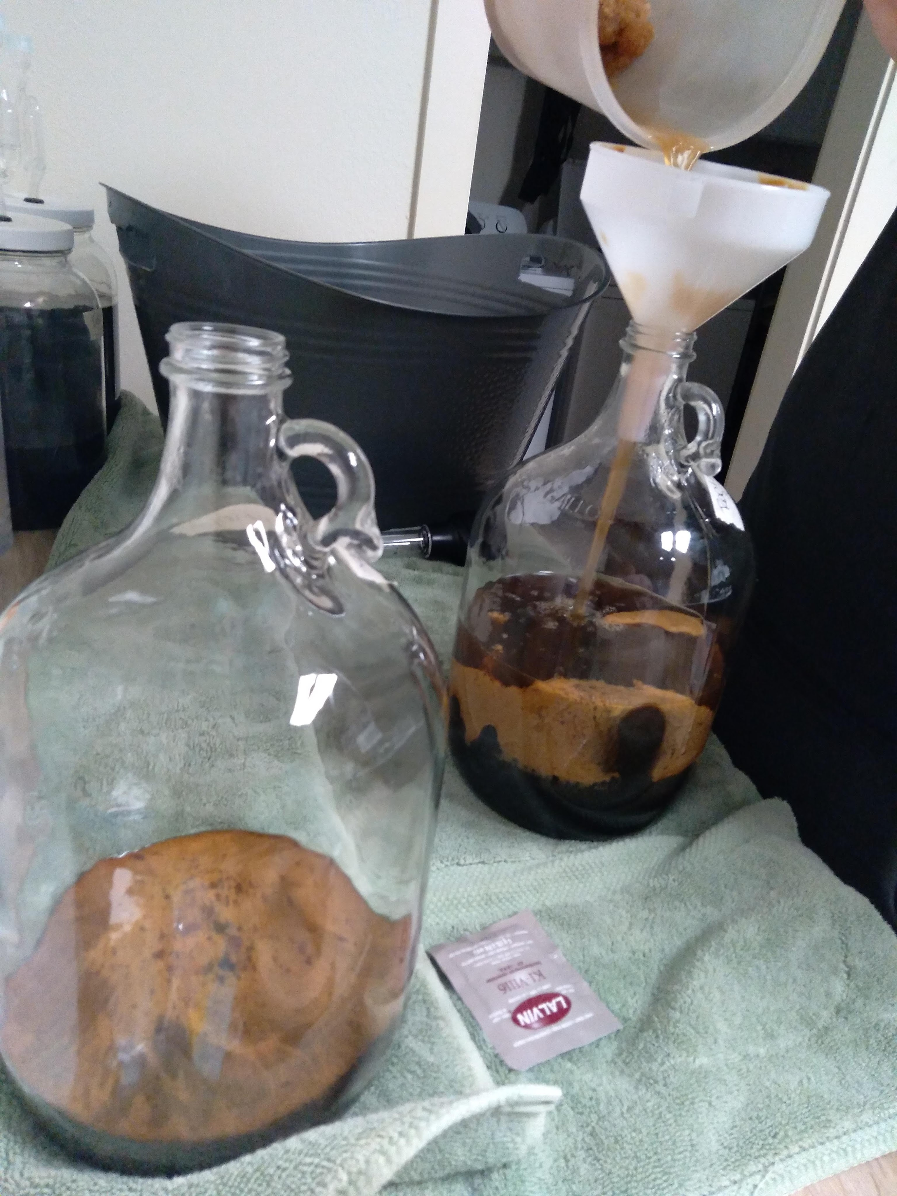 Into the Carboys